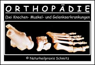 Die Orthopädie beschäftigt sich mit allen Belangen und Erkrankungen des Muskel- Knochen und Geleksapparates inklusive der Sehnen.